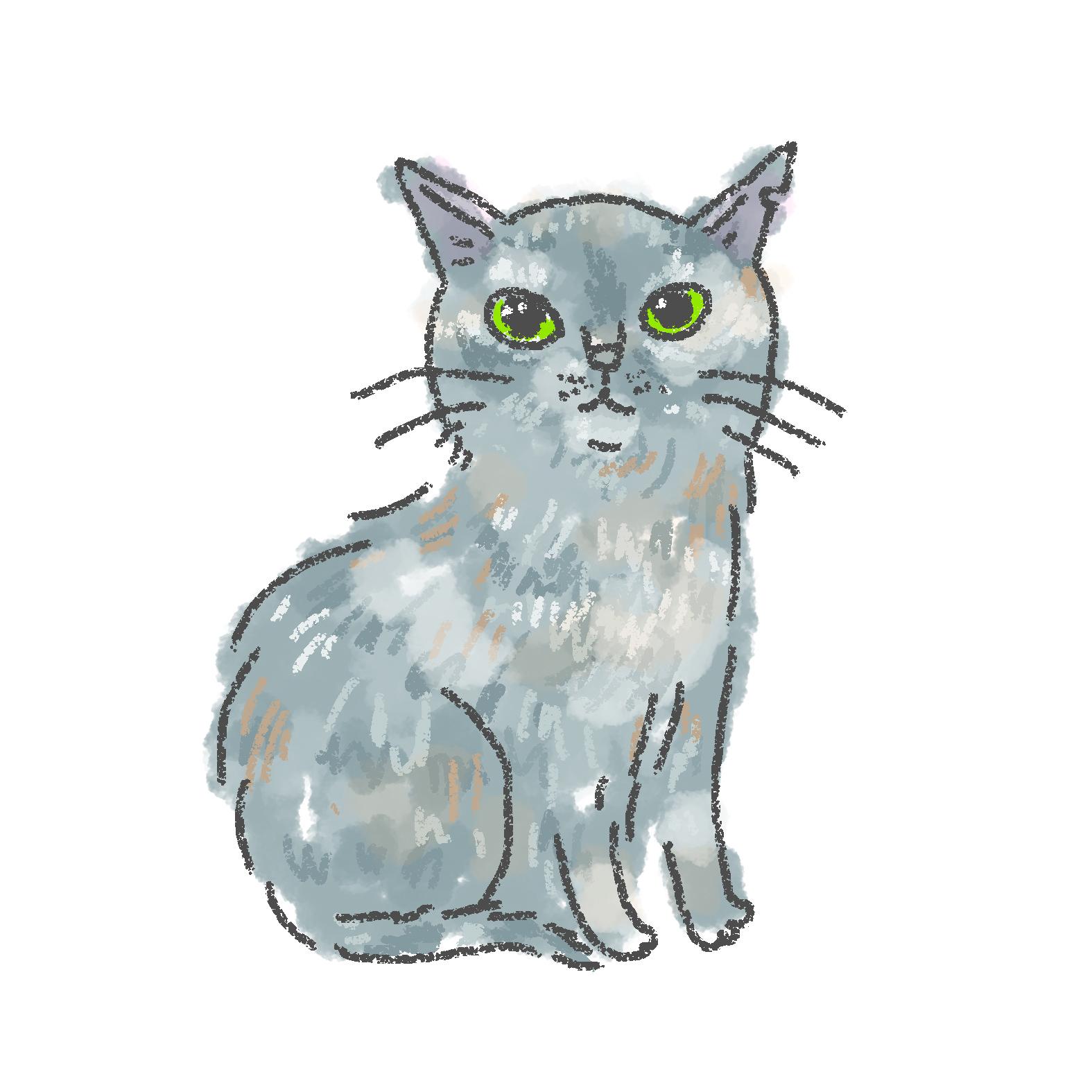 入居猫 ゴウイメージ