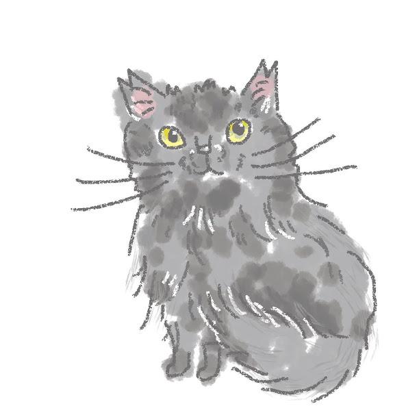 入居猫 サクライメージ