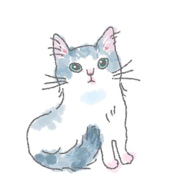 入居猫 サンイメージ