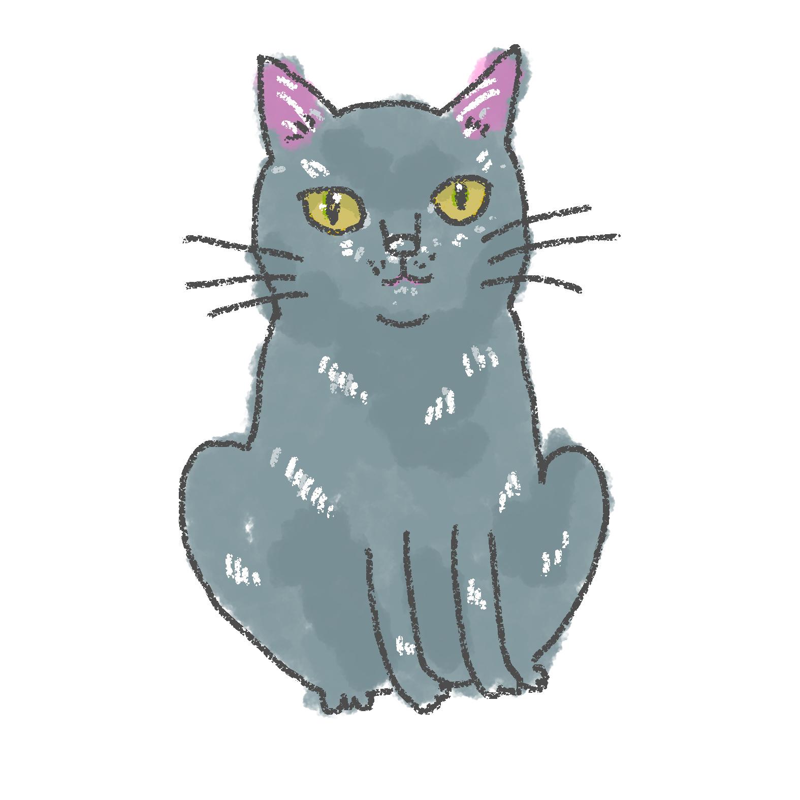 入居猫 ヤマトイメージ