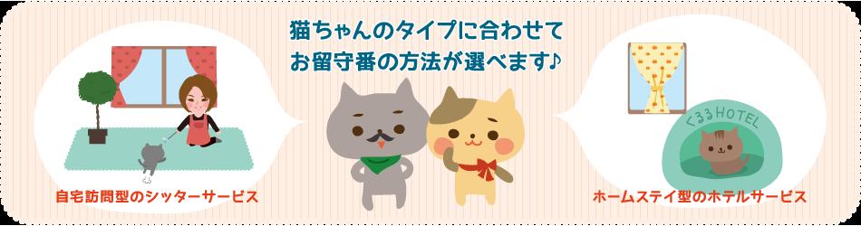 猫専門ペットシッター kururu~くるる~